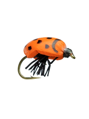kr lady bug fly