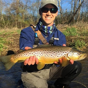 Ohio Brown Trout