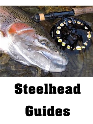 Fly Fishing Guides for Lake Erie Steelhead- Steelhead Alley steelhead fly fishing