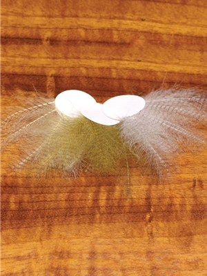 barred cdc feathers Hackle, Dry Flies