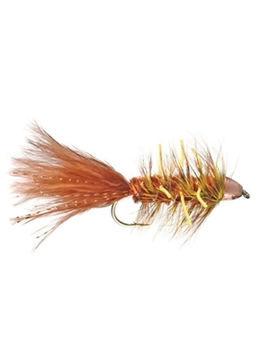 Autumn Splender New Flies