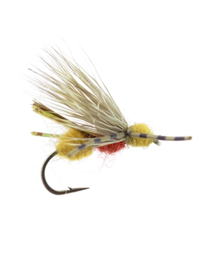 galloup's ant acid cinnamon New Flies