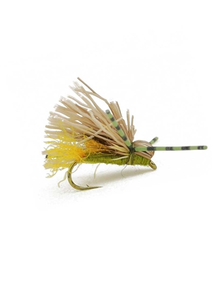 galloup's butch caddis olive New Flies