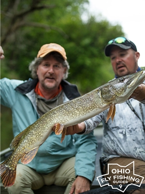 Mad River Outfitters is proud to offer excellent guided Northern Pike Trips all throughout Ohio! Mad River Outfitters