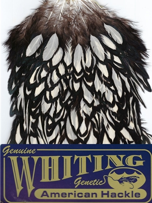 Whiting Farms American Hen Saddles- black laced white
