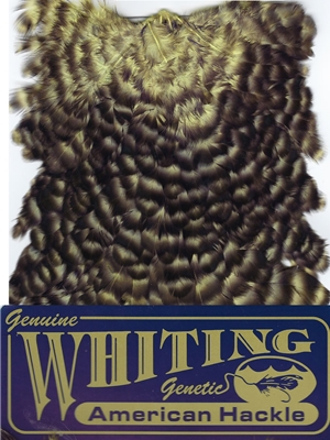 Whiting Farms American Hen Saddles- grizzly