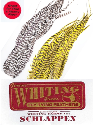 "Whiting Farms 10-14"" Schlappen Bundles"