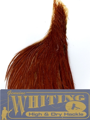 whiting high and dry half rooster capes