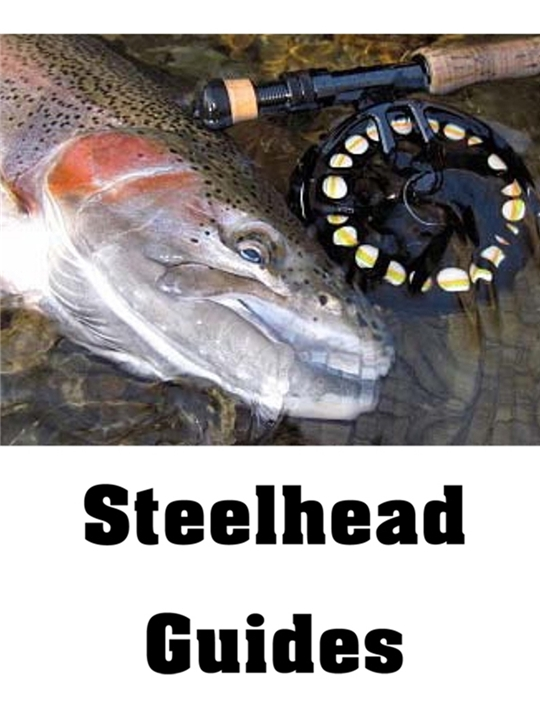 Fly Fishing Guides for Lake Erie Steelhead- Steelhead Alley