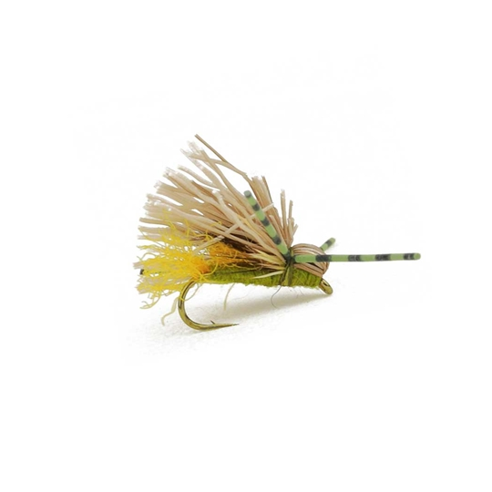galloup's butch caddis olive