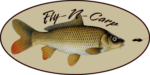 Fly Fishing for Carp- Guided Trips